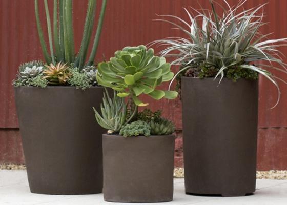 arranjos-com-plantas-suculenta-das-especies-echeveria-agave-e-sedum-criados-pela-flora-gribb-garden-1283816890224_560x400