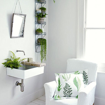 Green-ferns-in-a-white-bathroom