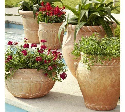 Piscinas emolduradas vaso e cia for Vaso piscina