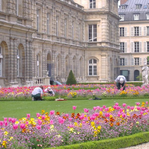 jardim-de-luxemburg2