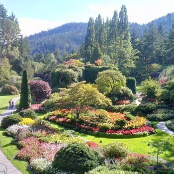 jardins-de-butchart-canada-jpg-20150814050619
