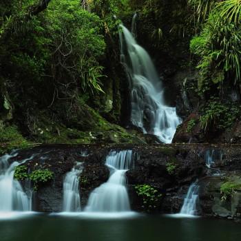 lamington-national-park