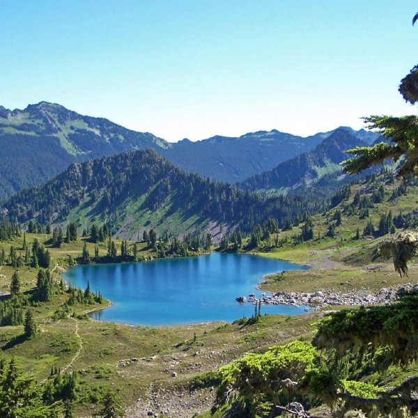 olympic national park, summer 2005